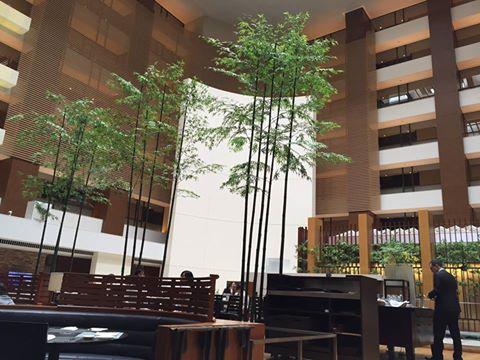 【おすすめホテル】ストリングスホテル東京インターコンチネンタル